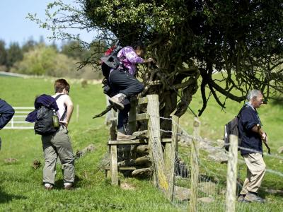 Coleford Area Walking Festival (11-19th May)